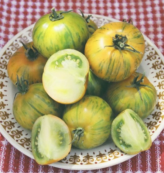 TOMATO - GREEN ZEBRA. 35 Seeds. # G152-35.