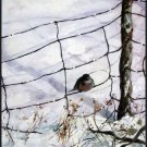 "Solitude Landscape Seasonal Winter Art Print Decorating 16""x20"" Poster"
