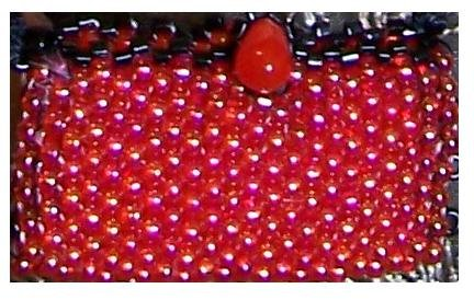 Tomato Red beaded purse - Fashion Doll Accessories
