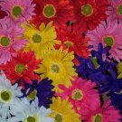 Dozen Bloomin' Pens - Gerbera assortment