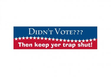 Didn't Vote? Bumper Sticker