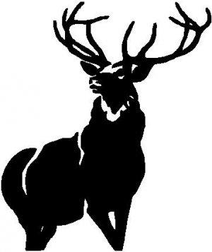 Whitetail Deer 2 - custom vinyl graphic  6x5 inch