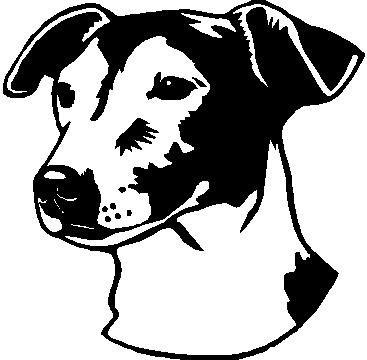 Jack Russell Terrier - custom vinyl graphic - 5x5 inch