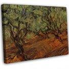 Van Gogh Olive Grove Bright Blue Sky 16x12 Framed Canvas Print