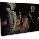Supernatural Us Tv Show Season Art Wall Decor 20x16 Framed Canvas Print