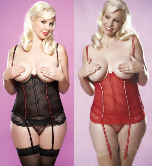 2 Piece Sheer Cupless Corset with Ribbon Trim and Garters