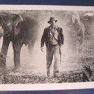 Temple of Doom IJ-TD-652 Indiana Jones Harrison Ford elephants photograph black white photo 1980s