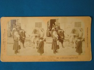 Victorian children bull cow stereograph stereoview stereoscope card Kilburn antique 1891 J Davis