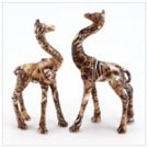 A pair of Intertwined Giraffes