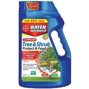 Bayer -Month Tree and Shrub Protect and Feed Granules, 3-Pound