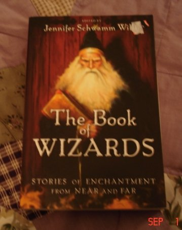 BOOK OF WIZARDS STORIES OF ENCHANTMENT BY JENNIFER SCHWAMM WILLIS