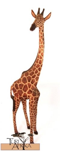 Product ID: 163     Wooden Giraffe Sculpture