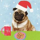 JCPenney Collectible Gift Card - Scratch 'n' Sniff - Hot Chocolate Marshmallows & Pug Dog SV0701080