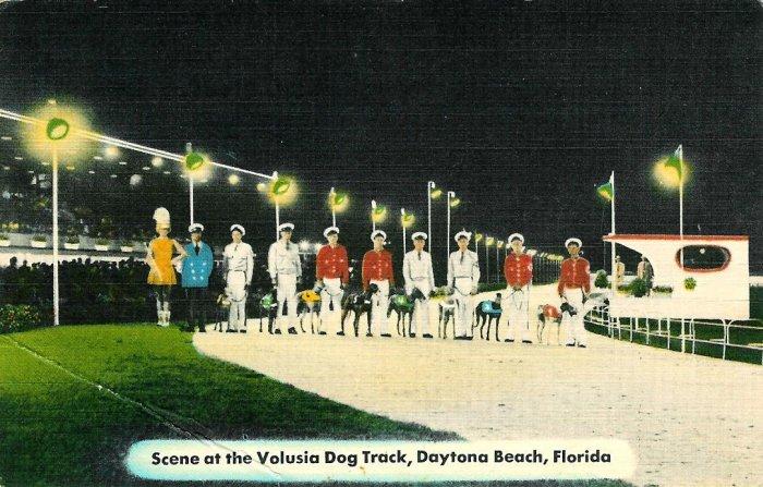 Daytona Beach Volusia Dog Track