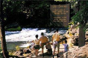 Big Spring, Van Buren, Missouri Postcard