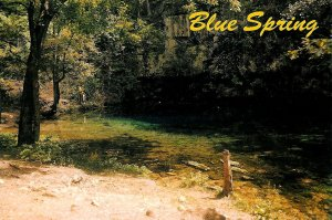 Blue Spring in the Carr Creek State Forest in South Eastern Missouri Postcard