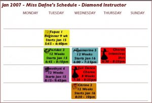 Bellydance Classes  Start Jan 15 - 9 weeks