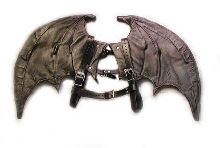 Leather bat wings
