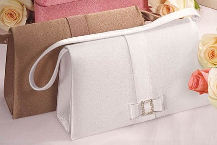 Crystal Buckle & Bow Evening Bag