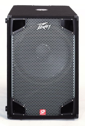 Peavey SP-118- speakers