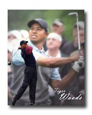 Tiger Woods Photo, Canvas PGA Golf Print (PGA015)