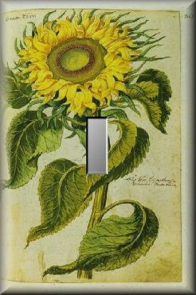 Vintage Botanical Illustration Sunflower Single Switch Plate
