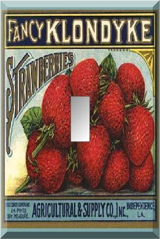 Fancy Strawberries Vintage Crate Lable Single Switch Plate