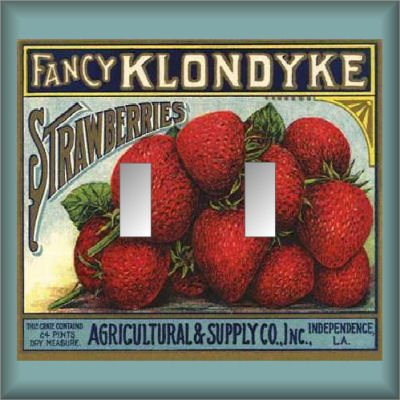Fancy Strawberries Vintage Crate Lable Double Switch Plate