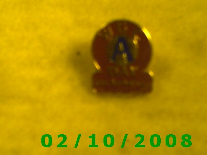WGC A Day 10th Anniversary Hat Pin