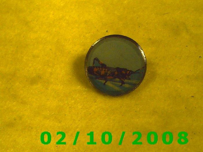Grasshopper Hat Pin