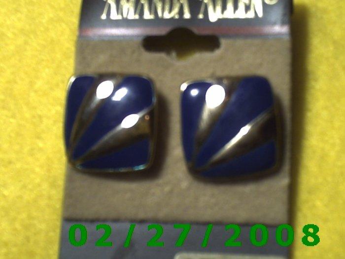 Earrings, Amanda Allen Surgical Steel Posts (012)