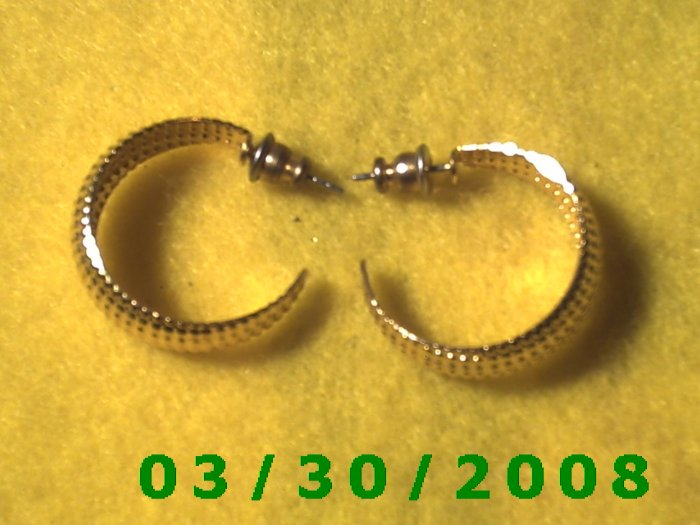 Gold Hoop Pierced Earrings  (022)