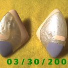 Painted Shell Pierced Earrings  (032)