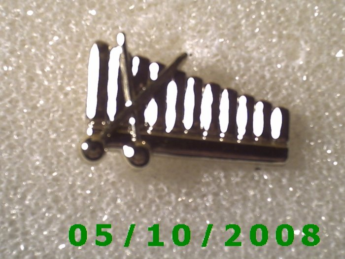 Xylophone Pin(118)