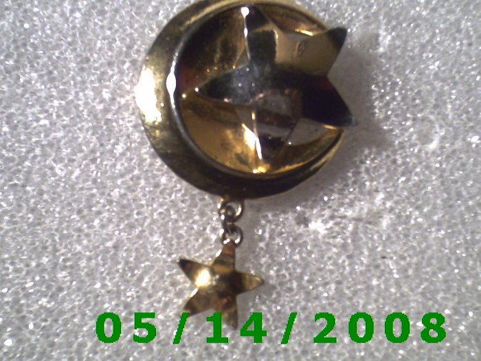 The Moon n Stars Gold Pin    B017