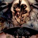 STRETCHER - ANNOMUNDI - CD