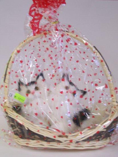 kitty basket(2)