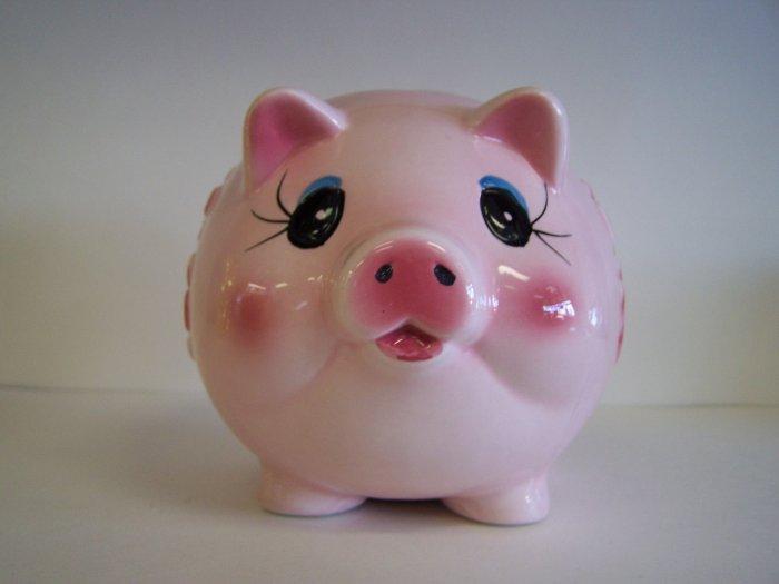 pink pig coin bank