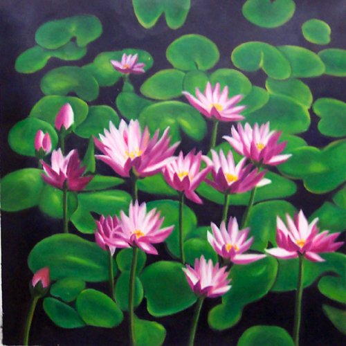 "034   Flower Water lily  pond Modern art Painting 20""20"