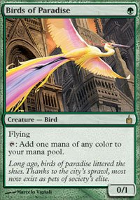 Magic the Gathering Card - Birds of Paradise (Ravnica)