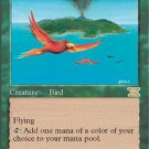 Magic the Gathering Card - Birds of Paradise (Sixth Edition)