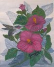 Rose Of Sharon  20X24  Catalog p.4