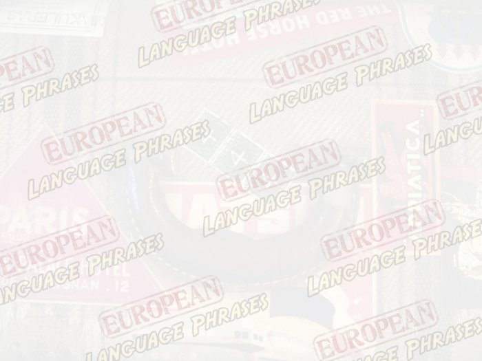 European Mini eBook ITALIAN language phrases digital