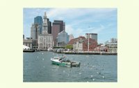 Fishing in Boston Harbor