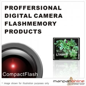 Genuine Kingston CompactFlash Elite Pro 4GB Flash Memory Card 133x