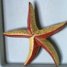 Retro Old Painted Wood ? Starfish Pin