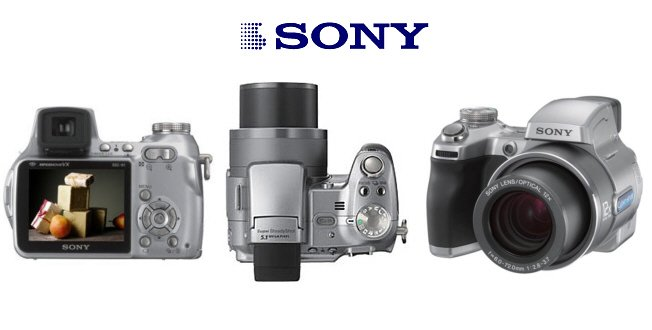 Sony Cybershot DSC-H1 - 5.1 Megapixel Digital Camera with 12x Optical Zoom