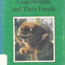 Raccoons Coatimundis and Their Family - Dorothy Patent 0823403602
