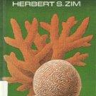 Corals by Herbert S Zim 1966 Hardcover Book Rare Book