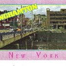 Binghamton Postcard Business District Court St Bridge at Chenango River Unused